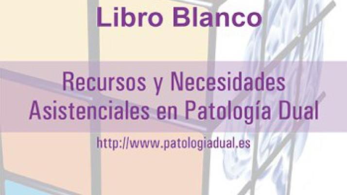 Recursos y Necesidades Asistenciales en Patología Dual